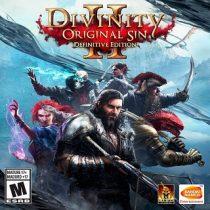 Divinity Original Sin 2 Definitive Edition